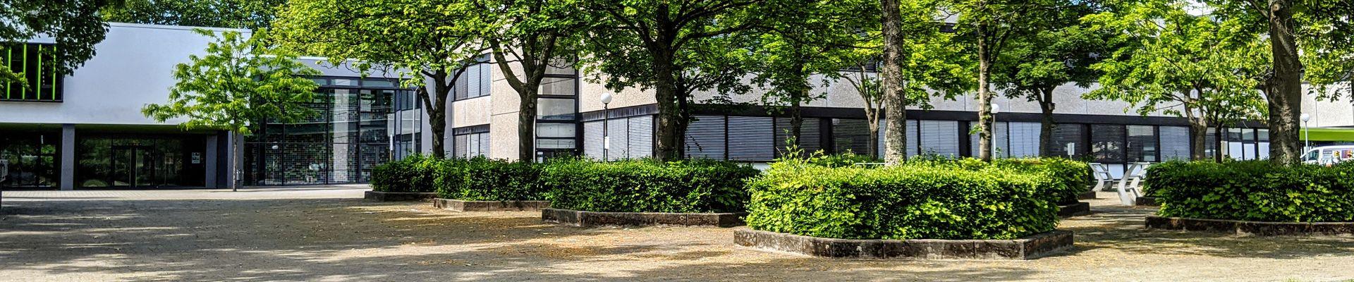Startseite Heinrich Böll Schule Hattersheim